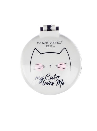 Compact cat hairbrush