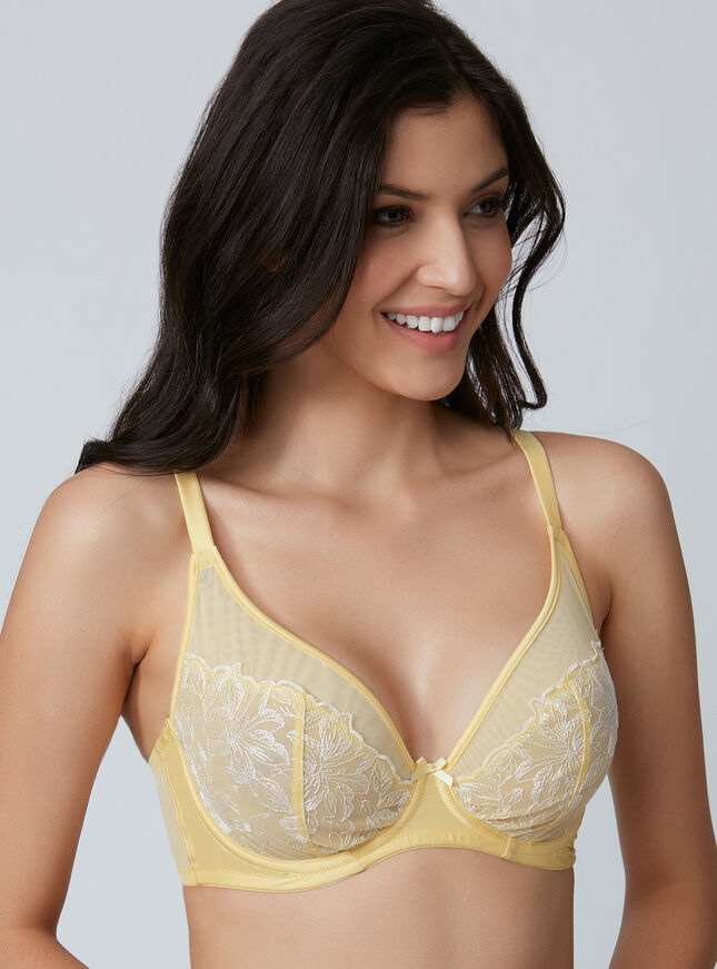 Lindy embroidered plunge bra