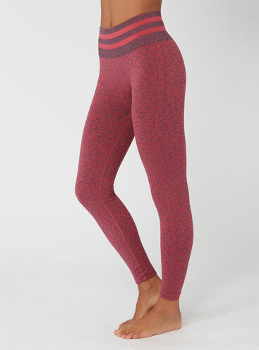 Activewear seam-free leopard leggings