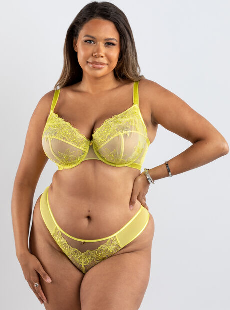 Lily embroidery brief