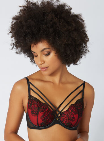 Cass embroidered plunge bra
